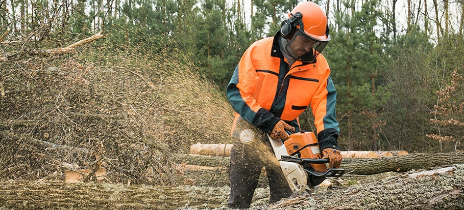 Chainsaw Level 1 Training
